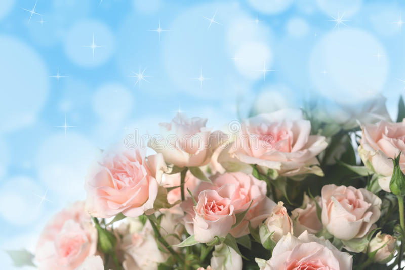 Bouquet des roses roses image stock