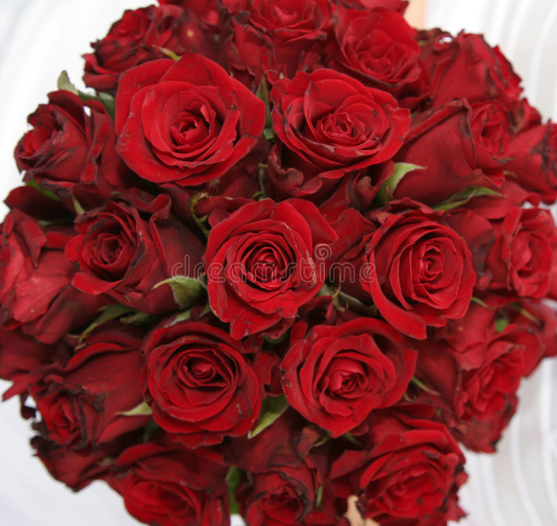 Bouquet des roses rouges photos libres de droits