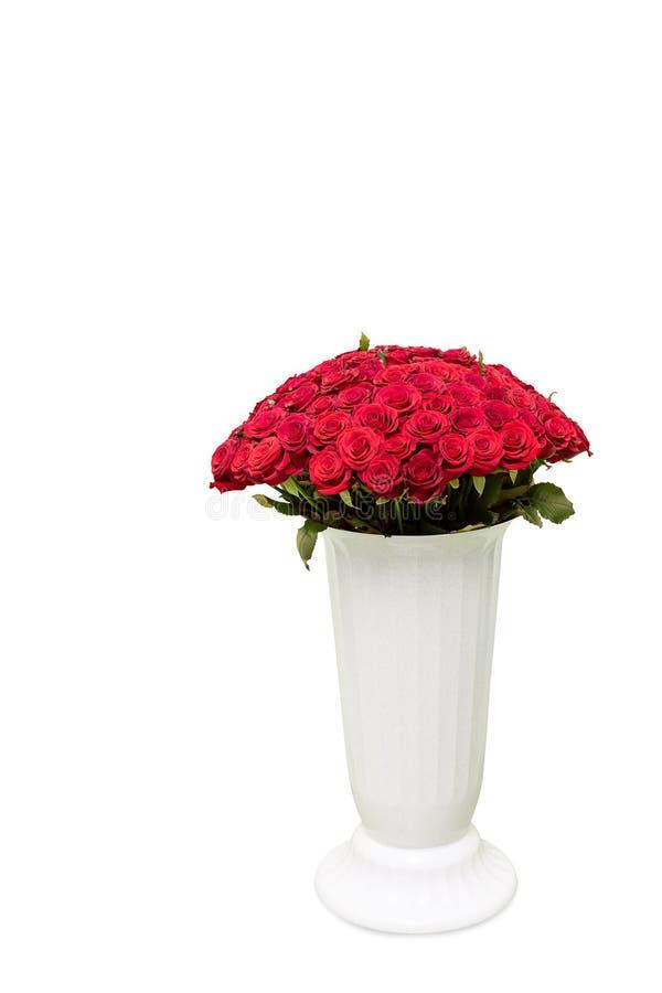Bouquet des roses rouges dans le grand vase sur le fond blanc photo libre de droits