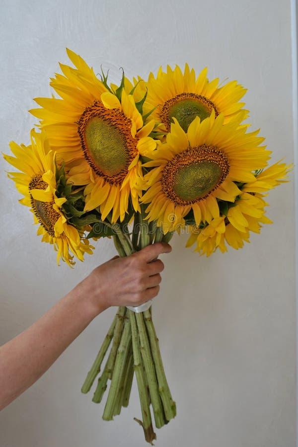 Bouquet des tournesols dans un vase photo libre de droits