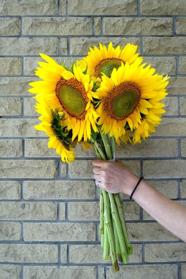 Bouquet des tournesols dans un vase images stock