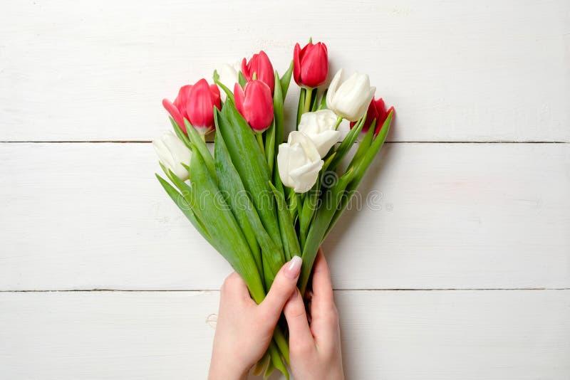 Bouquet des tulipes chez les mains de la femme sur le fond en bois blanc Carte de voeux pour le jour de la femme internationale,  photo stock