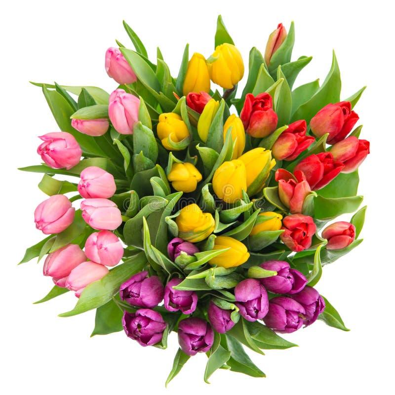 Bouquet des tulipes multicolores fraîches images stock