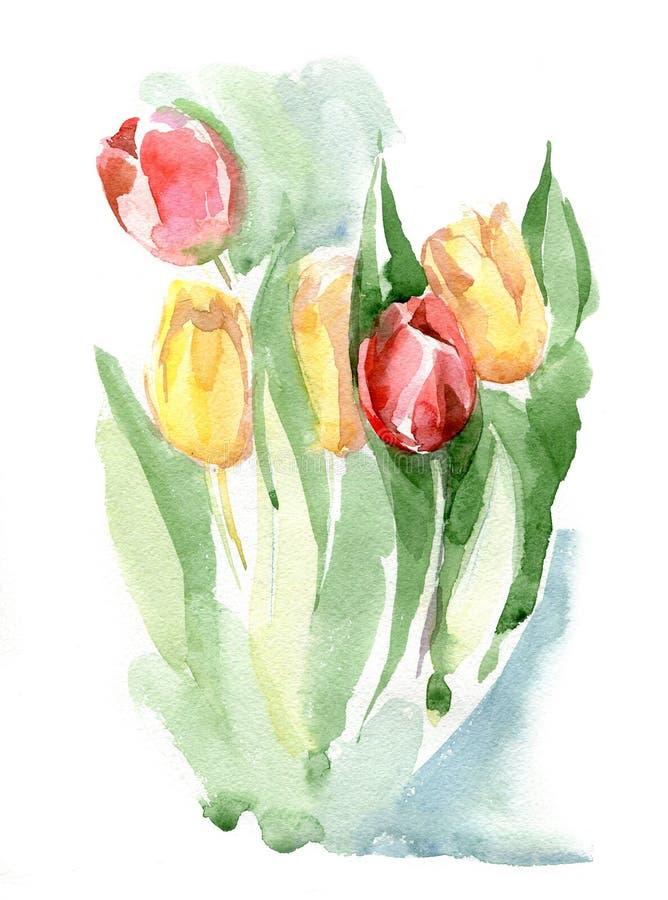 Bouquet des tulipes rouges et jaunes Ilustration d'aquarelle d'isolement illustration stock