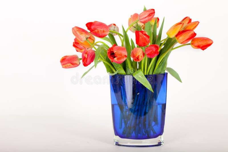 Bouquet des tulipes rouges et oranges dans un vase bleu image stock