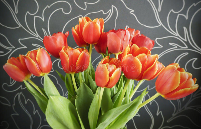 Bouquet des tulipes rouges sur le noir photos stock