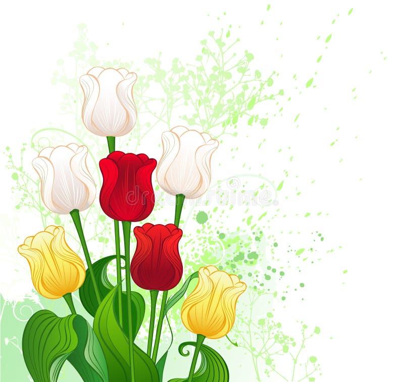 Bouquet des tulipes stylisées illustration libre de droits