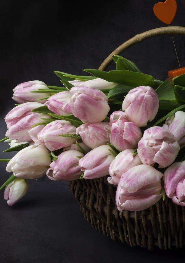 Bouquet des tulipes sur le fond gris photos stock