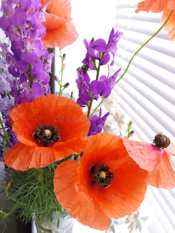 bouquet des wildflowers avec le pavot images stock