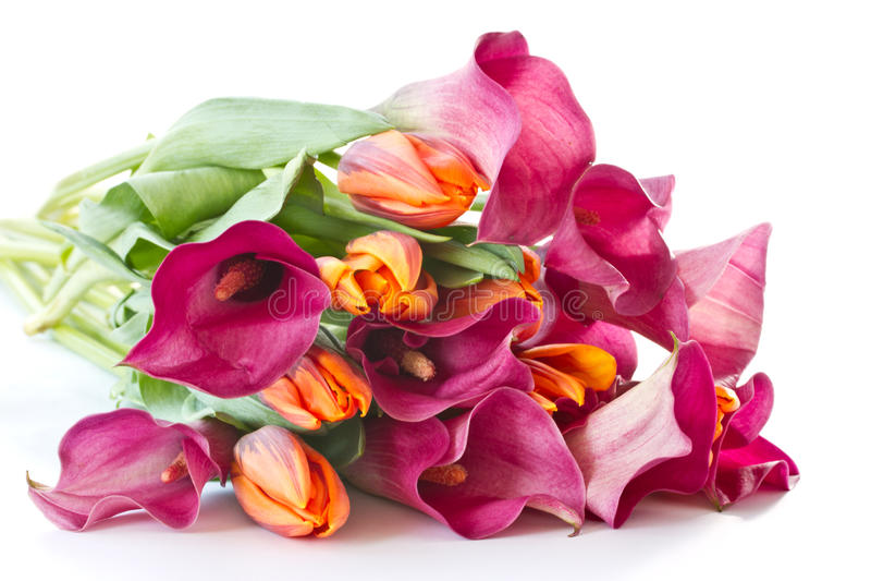 Bouquet des zantedeschias et des tulipes image stock