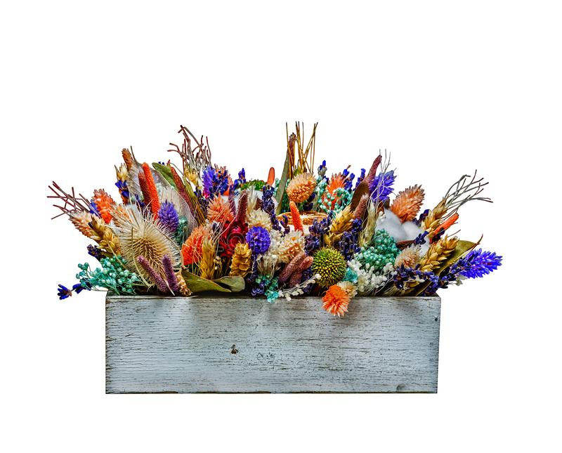 Bouquet of dried flowers, cotton, lavender royalty free stock images