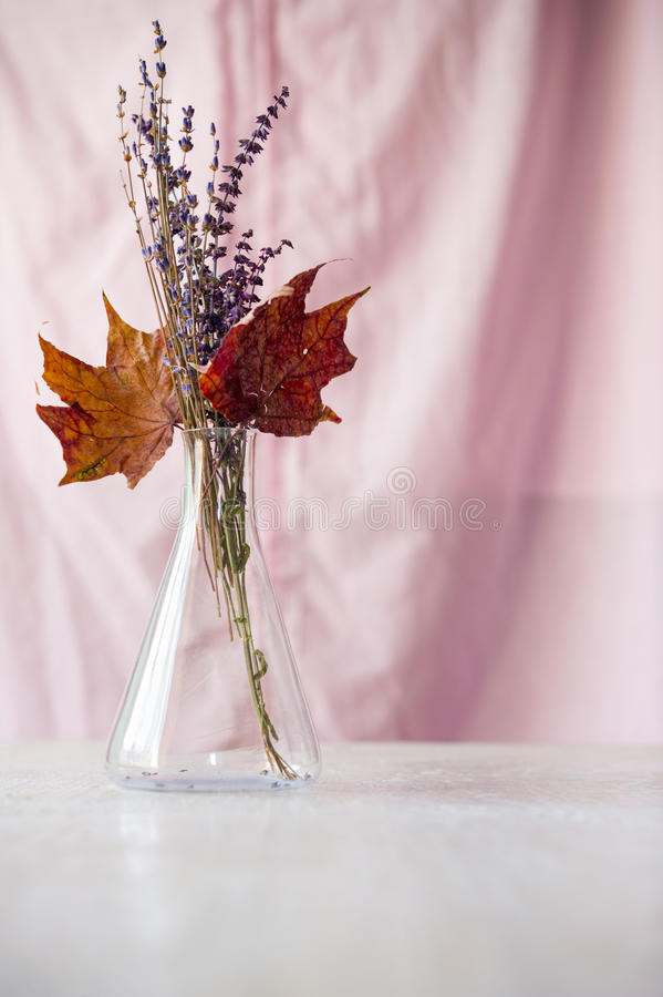 Download Bouquet Of Dried Flowers And Maple Leaves In Flask Stock Photo - Image: 29949980