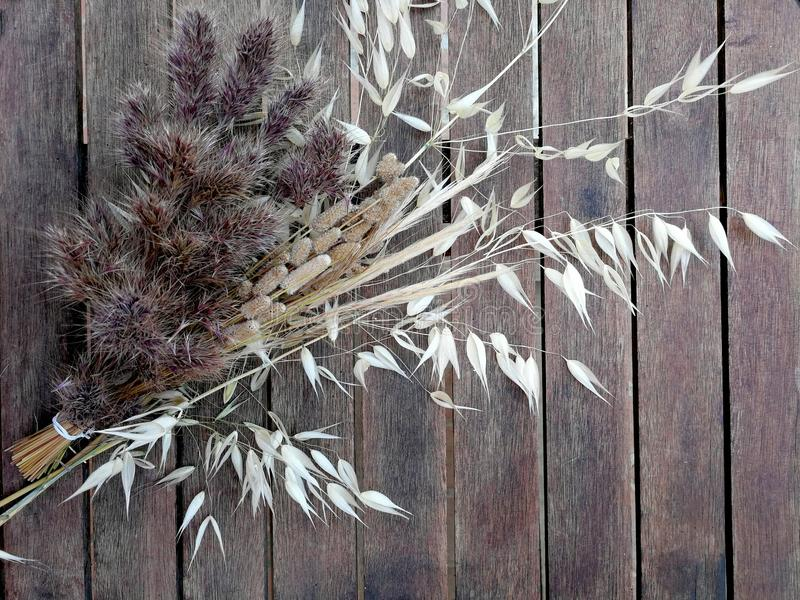 Bouquet of dried grasses. On a table of old wood stock photos