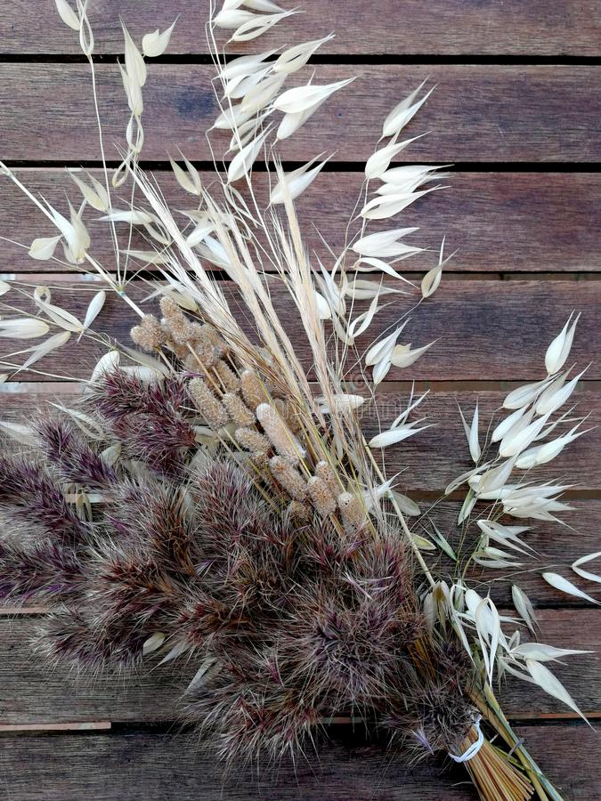 Bouquet of dried grasses. On a old wooden background stock photography