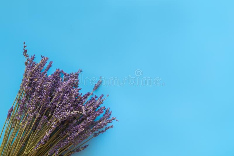 A bouquet of dry lavender in kraft paper on a blue background, symbolizing summer and France. Flat lay, top view. A bouquet of dry lavender in kraft paper on a royalty free stock images