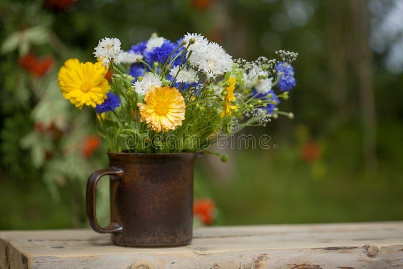 Bouquet estival du nord photos libres de droits