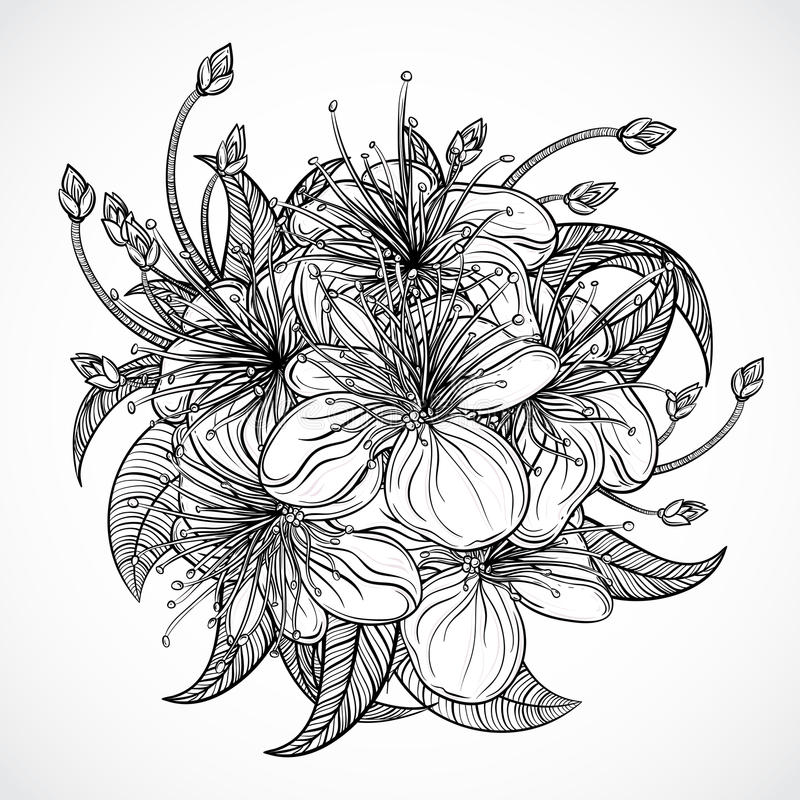 Bouquet of exotic flowers.Black and white tropical flowers and leaves. elements. Vintage hand drawn vector illustration royalty free illustration