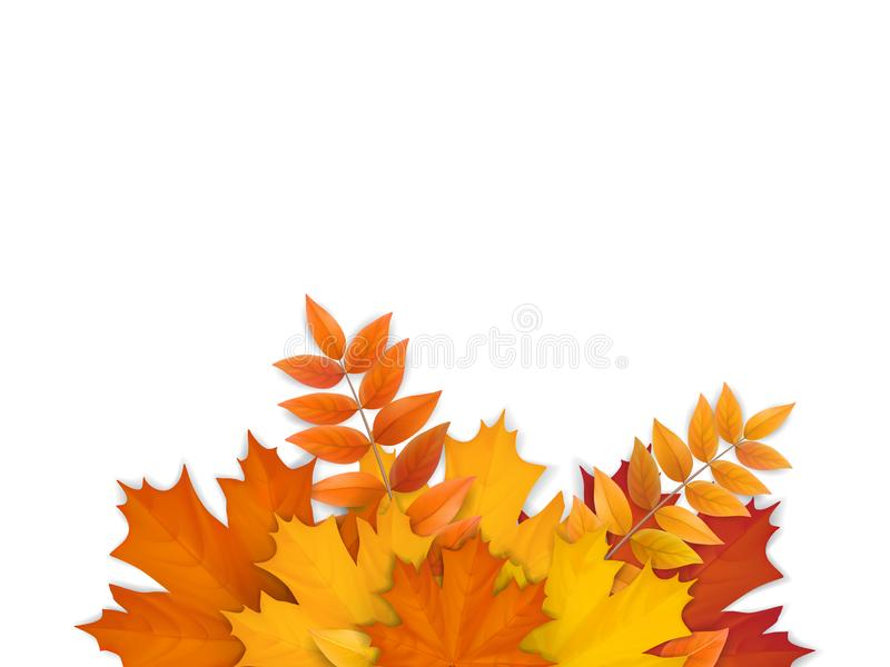 Bouquet of fallen autumn leaves stock images