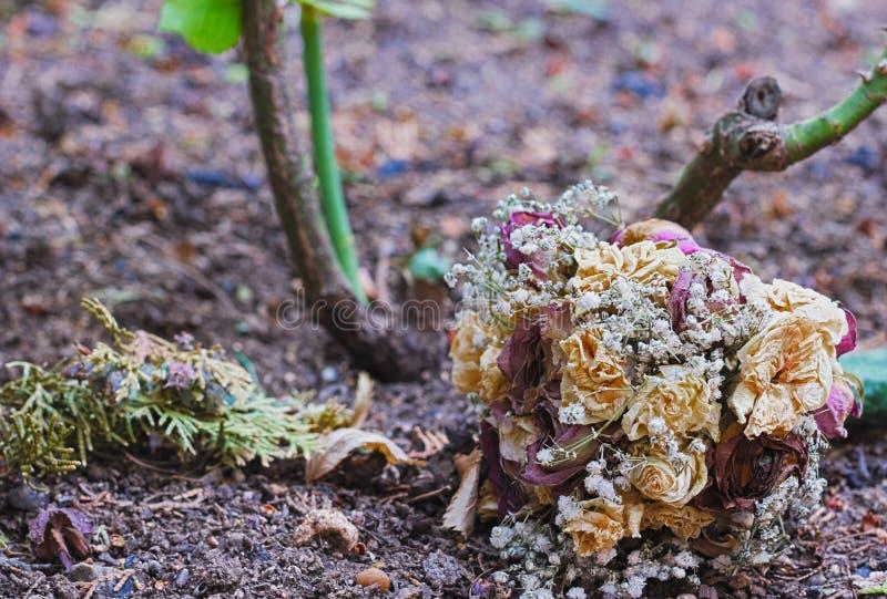 Bouquet fané photos libres de droits