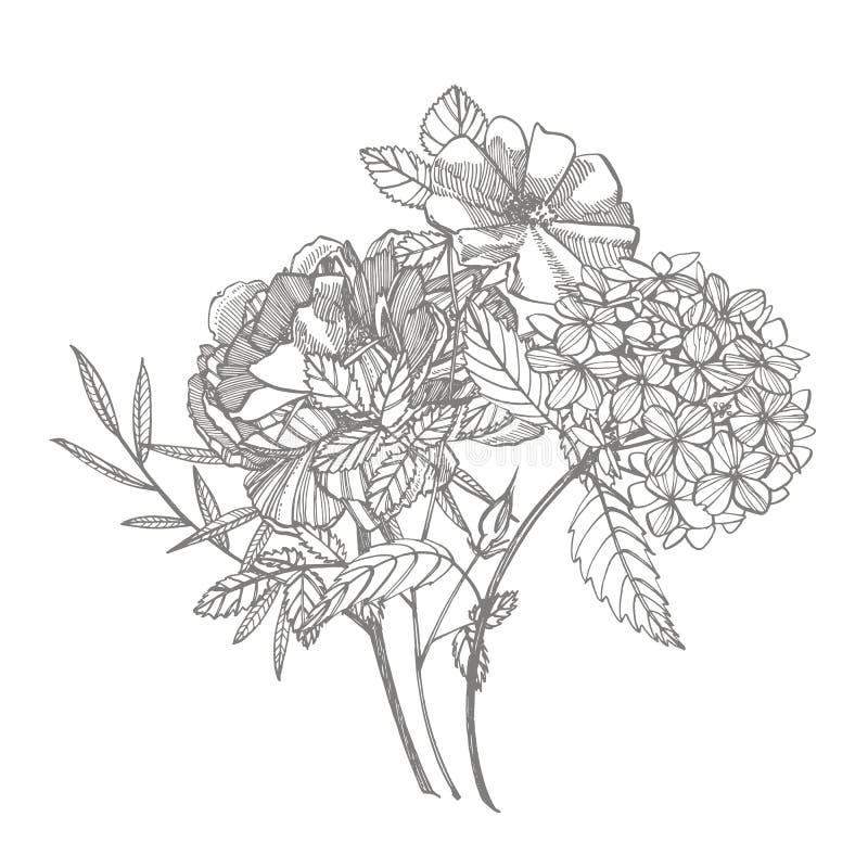 Bouquet Fleurs et brindilles de ressort Pivoines, hortensia, Rose Illustration botanique de vintage Ensemble noir et blanc de illustration stock