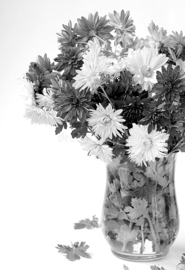 Bouquet of flowers autumn stock photos