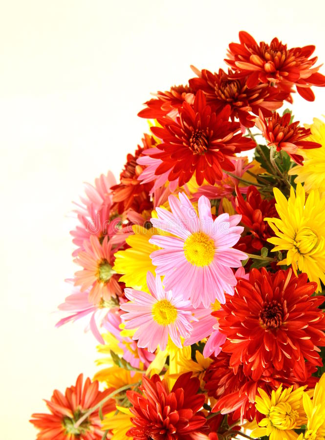 Bouquet of flowers autumn royalty free stock photography