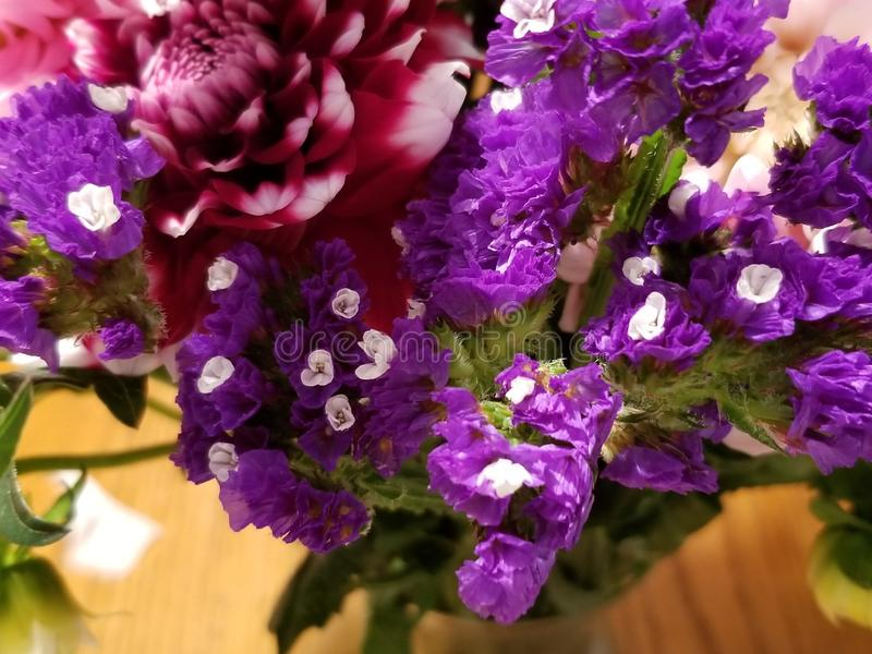 Bouquet. Flowers, floral, arrangements, purple royalty free stock photography