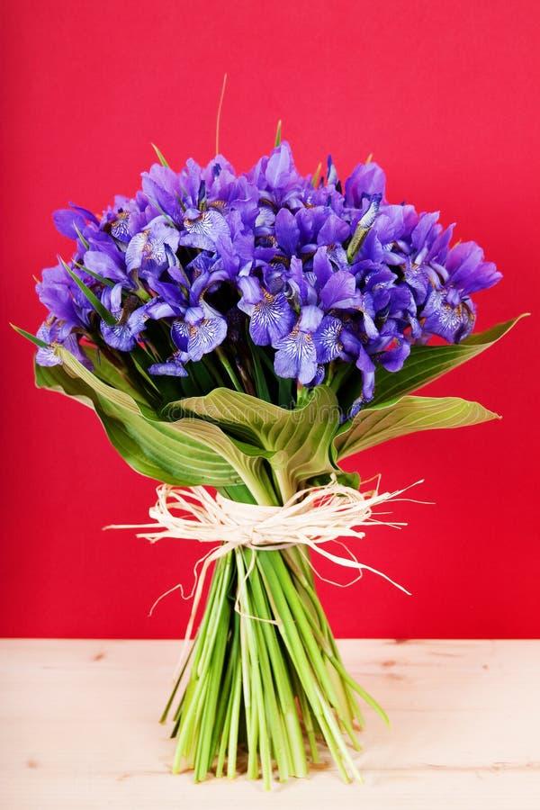 Bouquet of flowers iris stock image