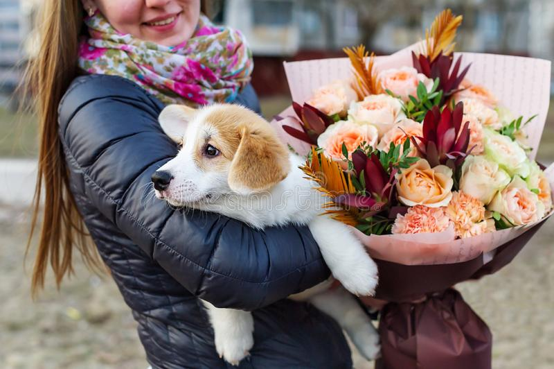 Bouquet of flowers and puppy dog. Girl`s back and holding a small dog. The puppy in his arms stock photo
