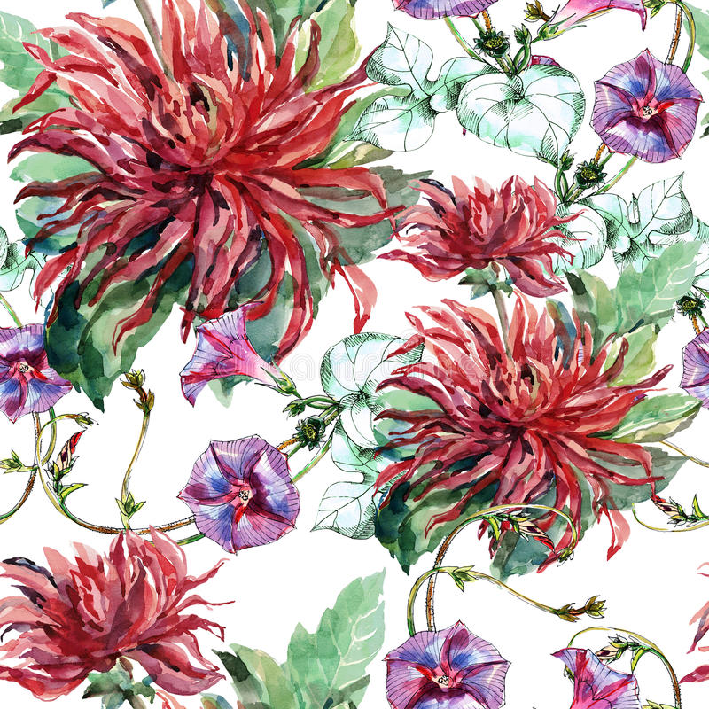 Bouquet flowers, red dahlia, ipomoea, watercolor, pattern seamless royalty free illustration