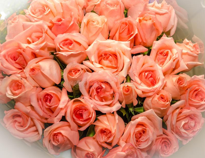 Bouquet of flowers roses. The view from the top. royalty free stock image
