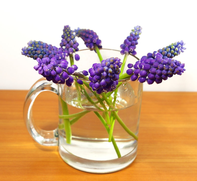 Bouquet of flowers in a transparent cup royalty free stock photography