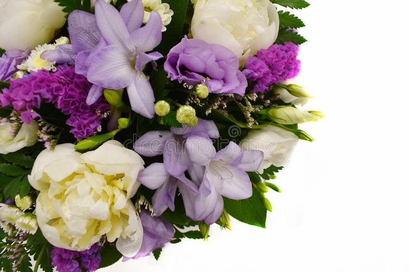 Bouquet of flowers on white background with copy place royalty free stock images