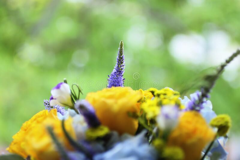 Bouquet of flowers with yellow roses.The concept of male care.Beautiful wildflowers. Bouquet of flowers with yellow roses.The concept of male care. A gift with stock image