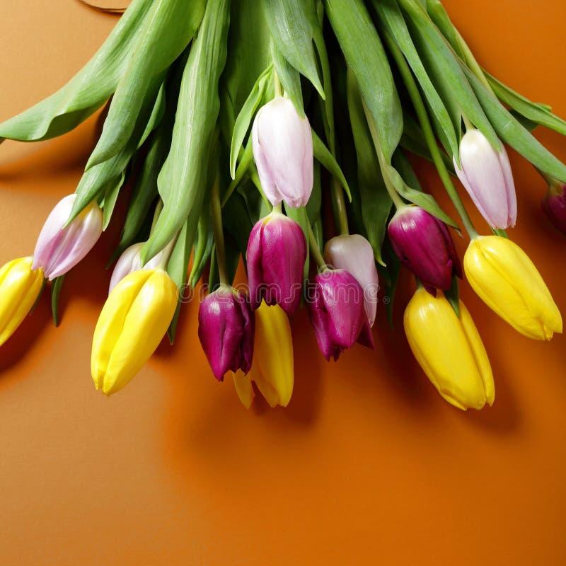Bouquet frais de source images stock