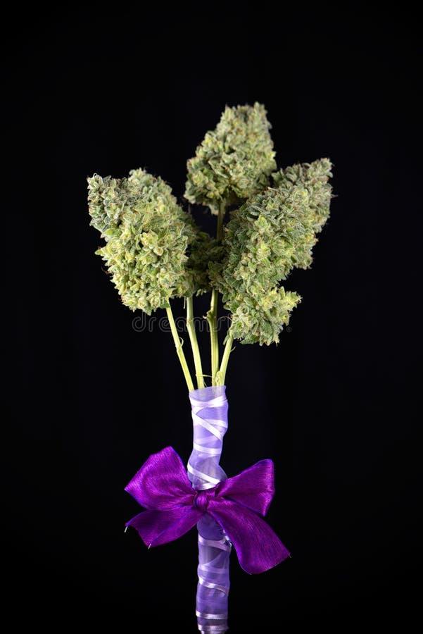 Bouquet of fresh cannabis flowers Mangolope marijuana strain t royalty free stock photos