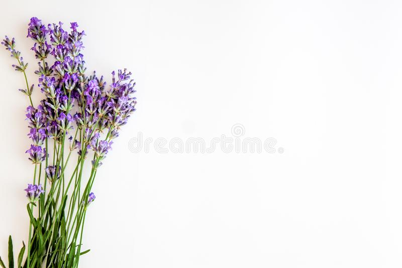 Bouquet of fresh lavender flowers on white background, top view, isolated. Copy space. Flat lay.  stock images