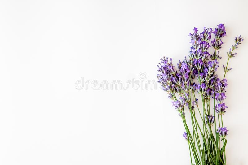Bouquet of fresh lavender flowers on white background, top view, isolated. Copy space. Flat lay.  stock photo