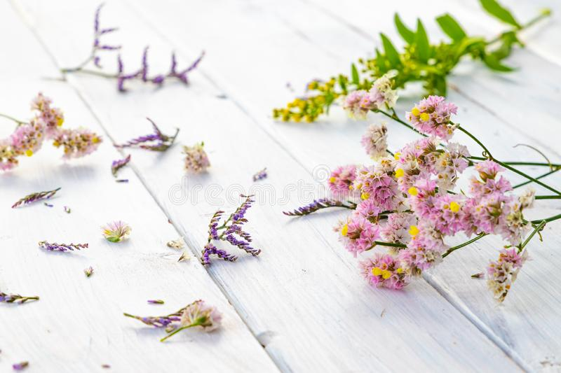 Fresh pink flowers on white wooden background royalty free stock image