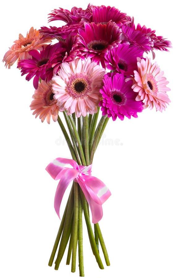 Bouquet of Gerbera flowers stock images