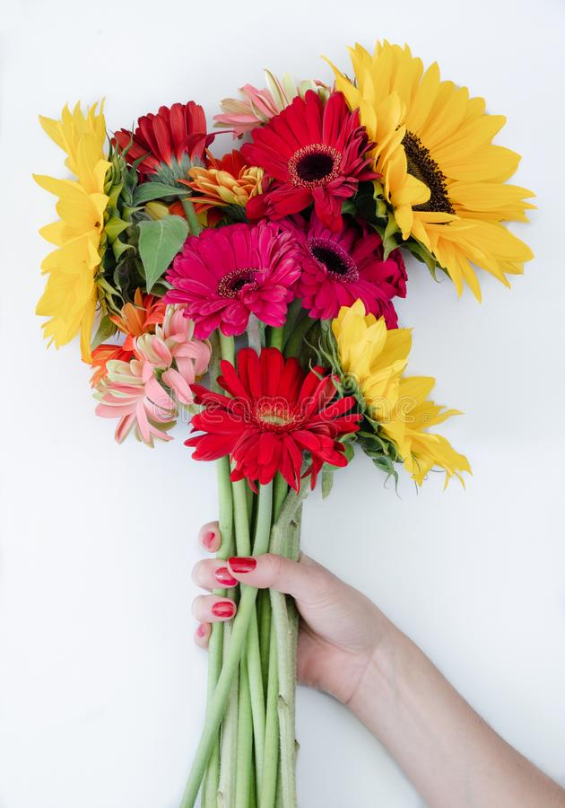 Bouquet of gerbera flowers and sunflower on white background royalty free stock photos