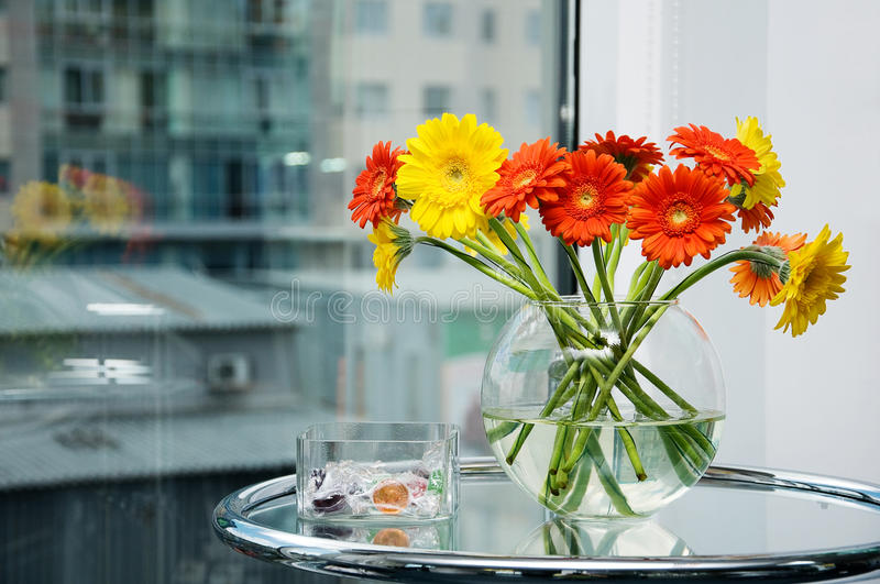 Pink And Orange Gerber Daisies In Clear Vase Stock Photo ...