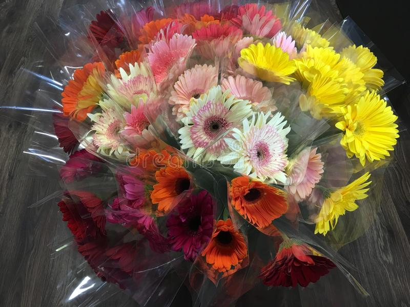 Bouquet gerbere stock photography