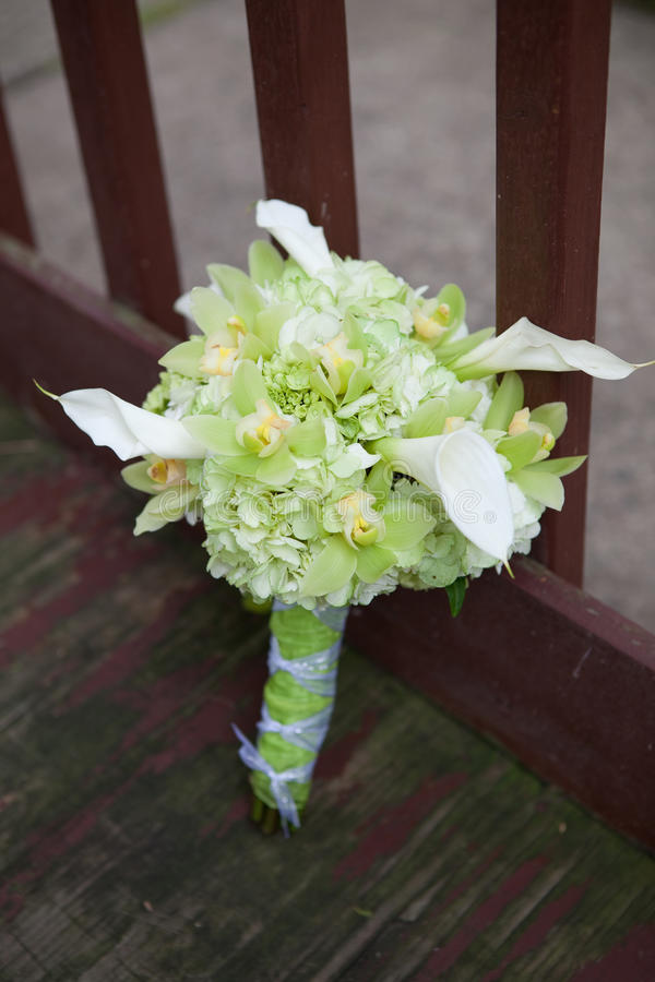 Bouquet of green flowers royalty free stock photo