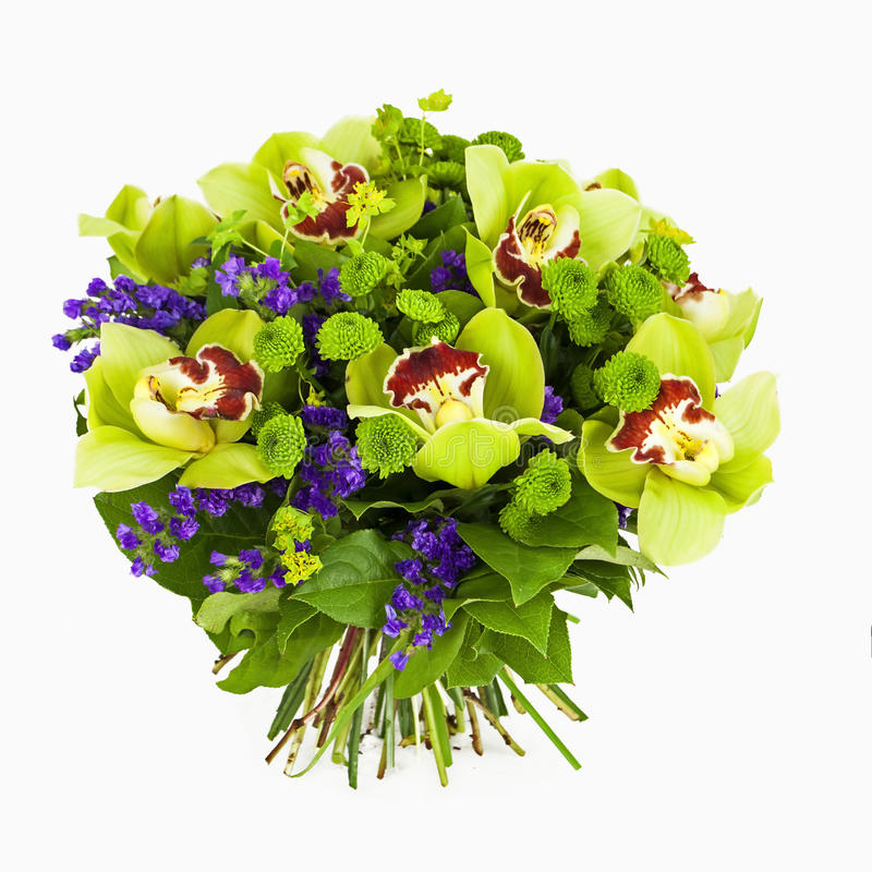 Bouquet of green orchids isolated on white stock images