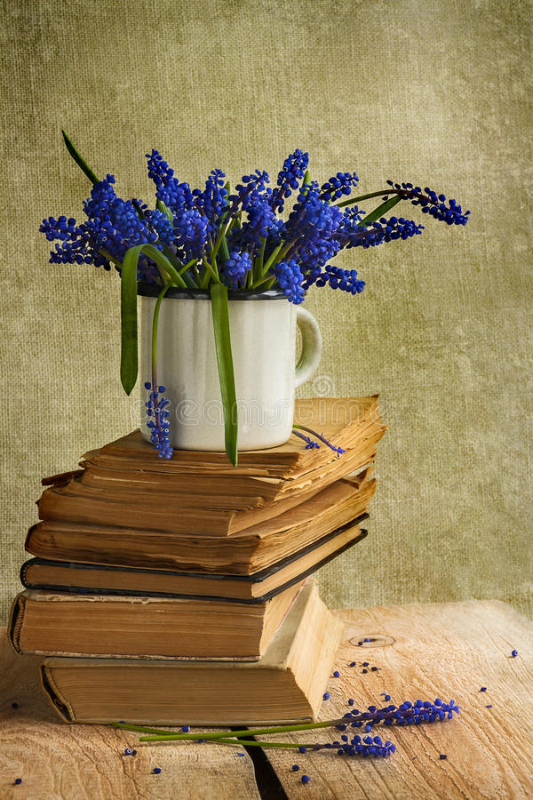 Bouquet hyacinth flowers books vintage wooden royalty free stock photo