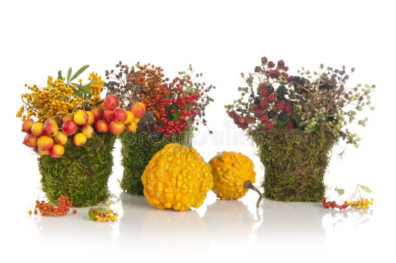 Bouquet initial de fleur de conception photographie stock