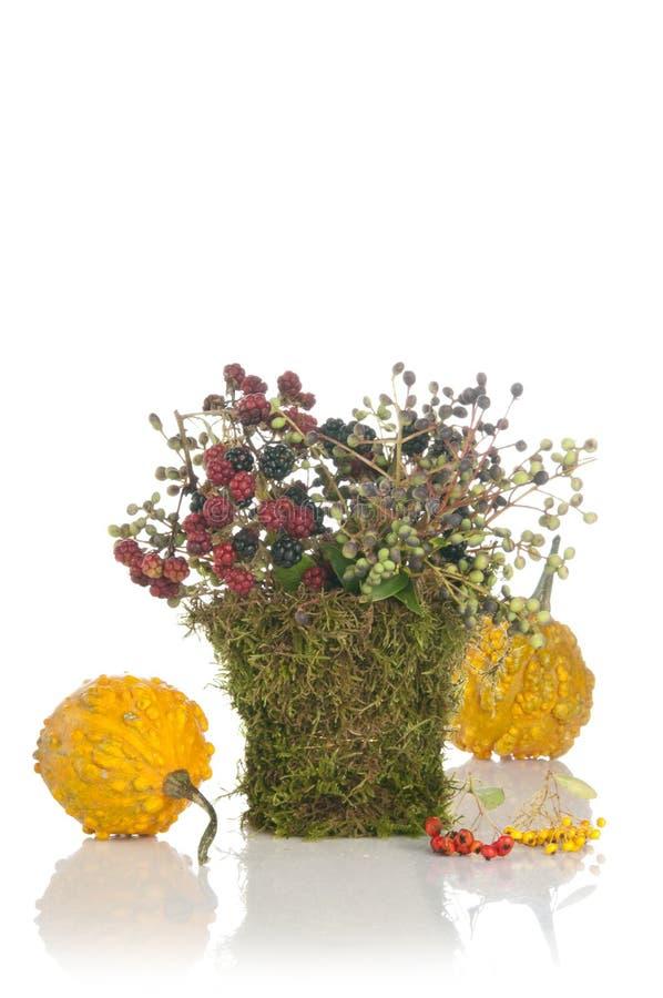 Bouquet initial de fleur de conception photo libre de droits