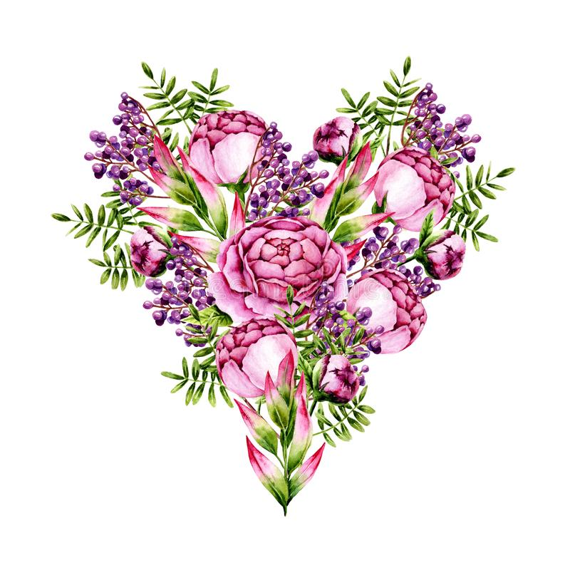 bouquet isolado de peônias de aquarela, sacudidelas e bagas, em forma de coração, a branco Modelo com flores pintadas à mão ilustração royalty free