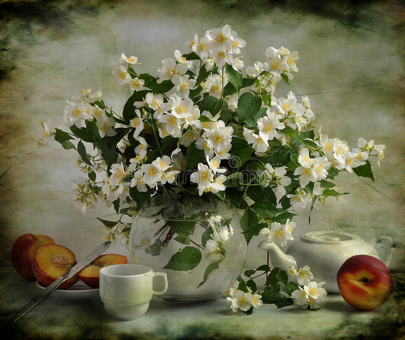 Bouquet of jasmin. With peaches and tea stock images